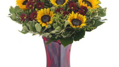 Photo of משלוחי פרחים: איכות וטריות בלתי מתפשרת